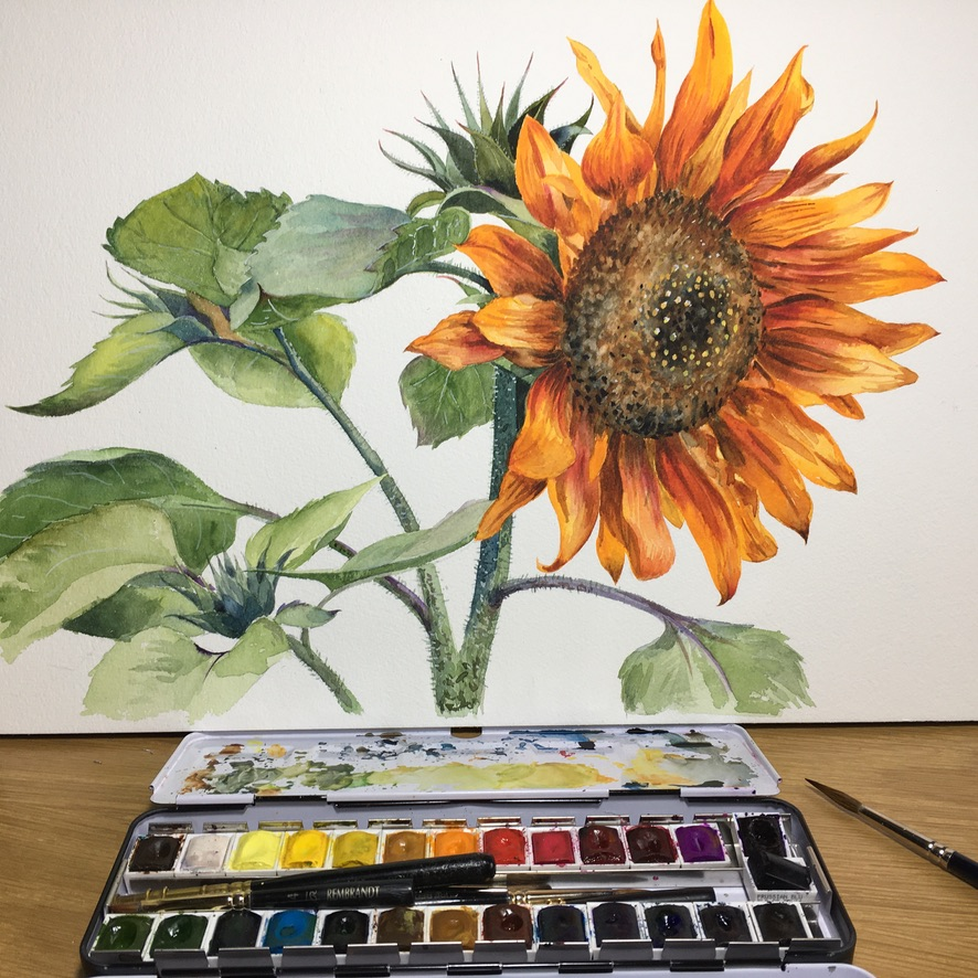 Sunflower with Attitude £150
